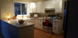 medium sized kitchen with white cabinets and stainless steel handles