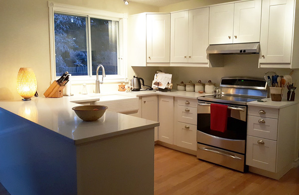 white kitchen cabinets in a medium sized kitchen